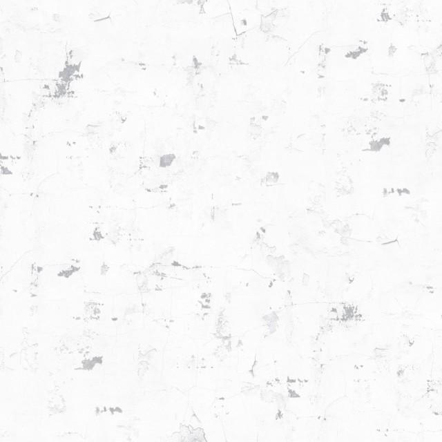 福斯卡里纹 S2048-1