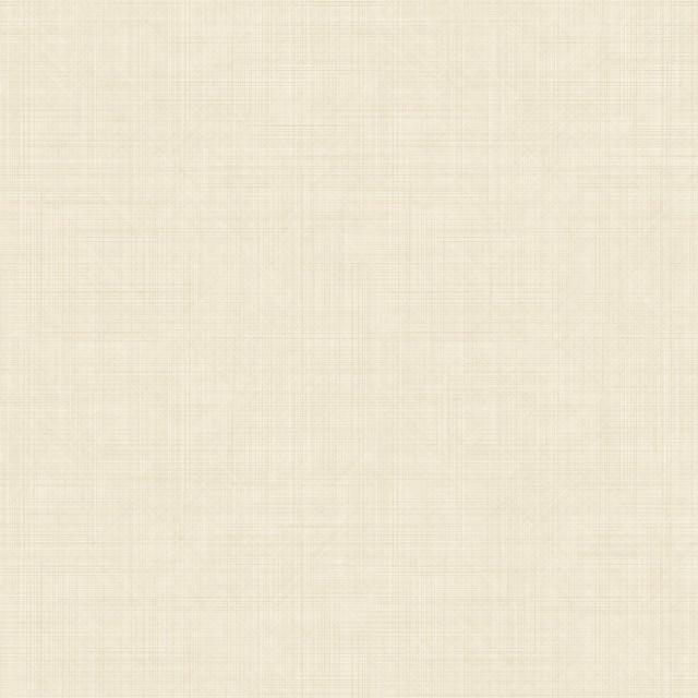 网布纹B7009-5