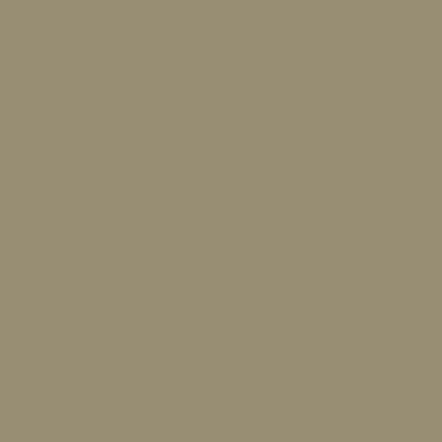 牡蛎灰 D4018