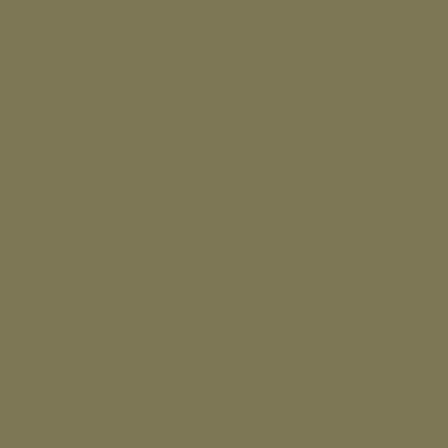 苔藓绿 D4025